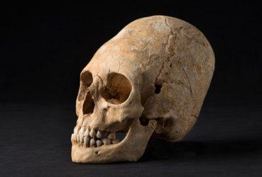 Des découvertes archéologiques révèlent 6900 ans d'histoire en Alsace