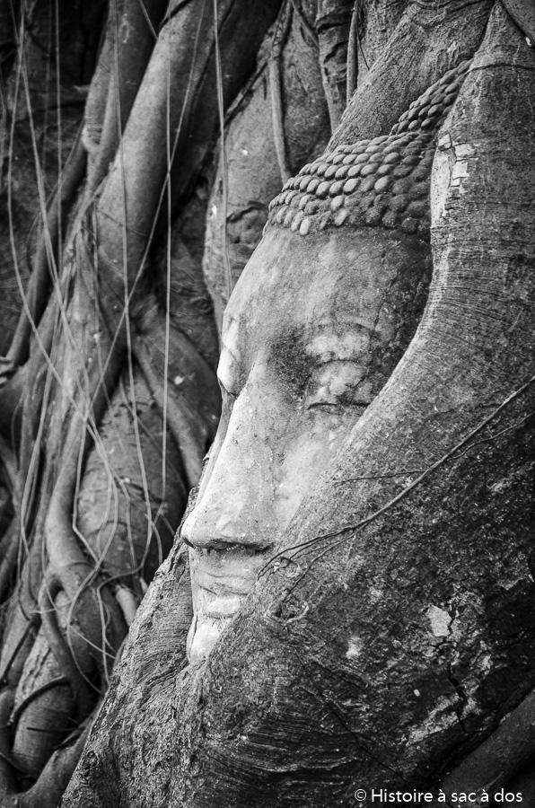 Tête de bouddha du Wat Mahathat
