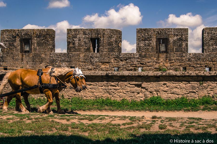 Murailles du château de Carcassonne