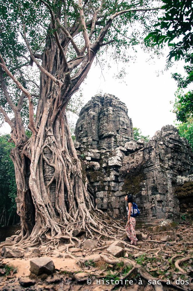 Temple Ta som prisonnier des racines d'un arbre gigantesque