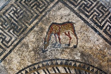 Superbes mosaïques romaines découvertes à Uzès