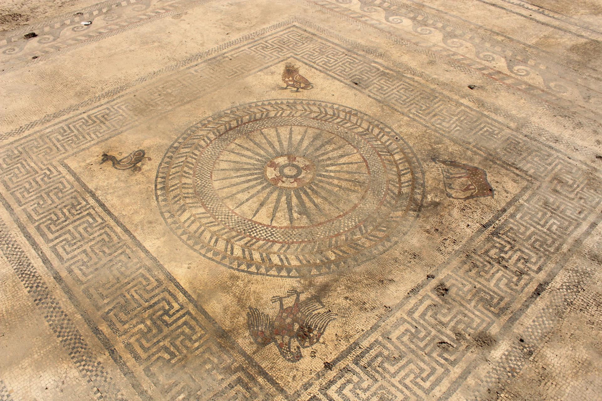 Motif central de la mosaïque (seconde moitié du Ier siècle avant notre ère) découverte dans un probable bâtiment public.