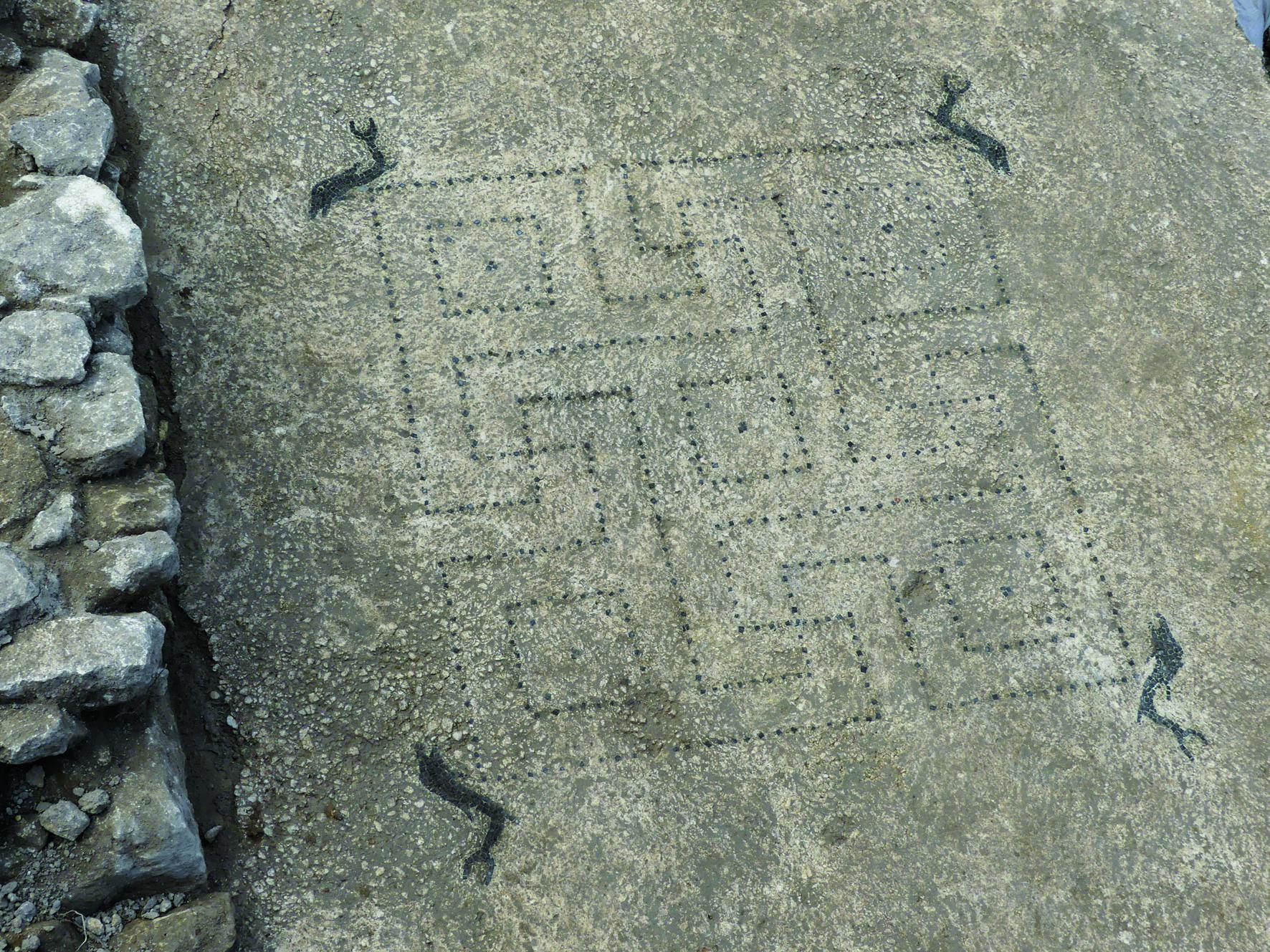 Mosaique à dauphin - Uzès