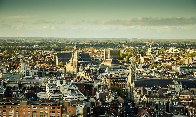 Vue de Lille