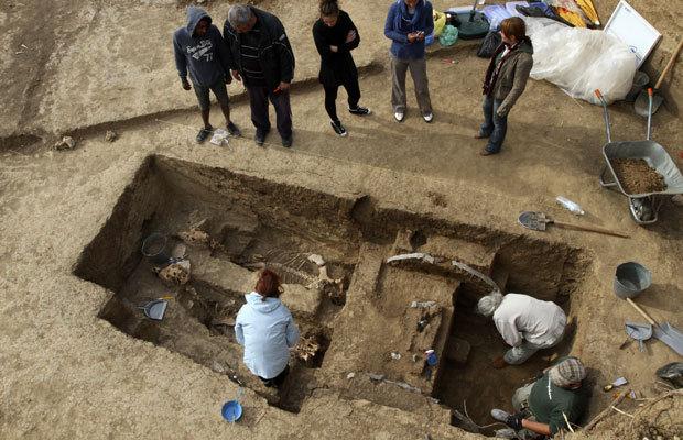 Découverte de chevaux et d'un attelage de 2500 ans