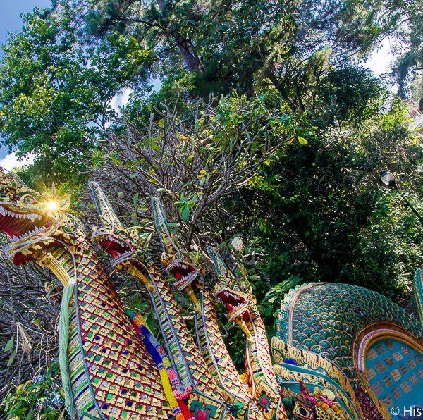 Escaliers du Wat Doi Suthep