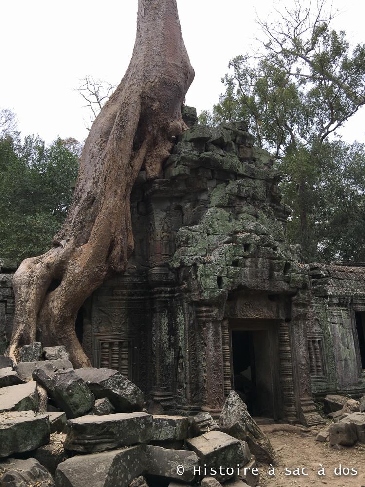 Temple Ta Phrom. Délibérément laissé à l'état de ruines, il nous donne une idée de l'état des temples d'Angkor lorsqu'ils furent redécouverts par les archéologues au XIXème siècle.