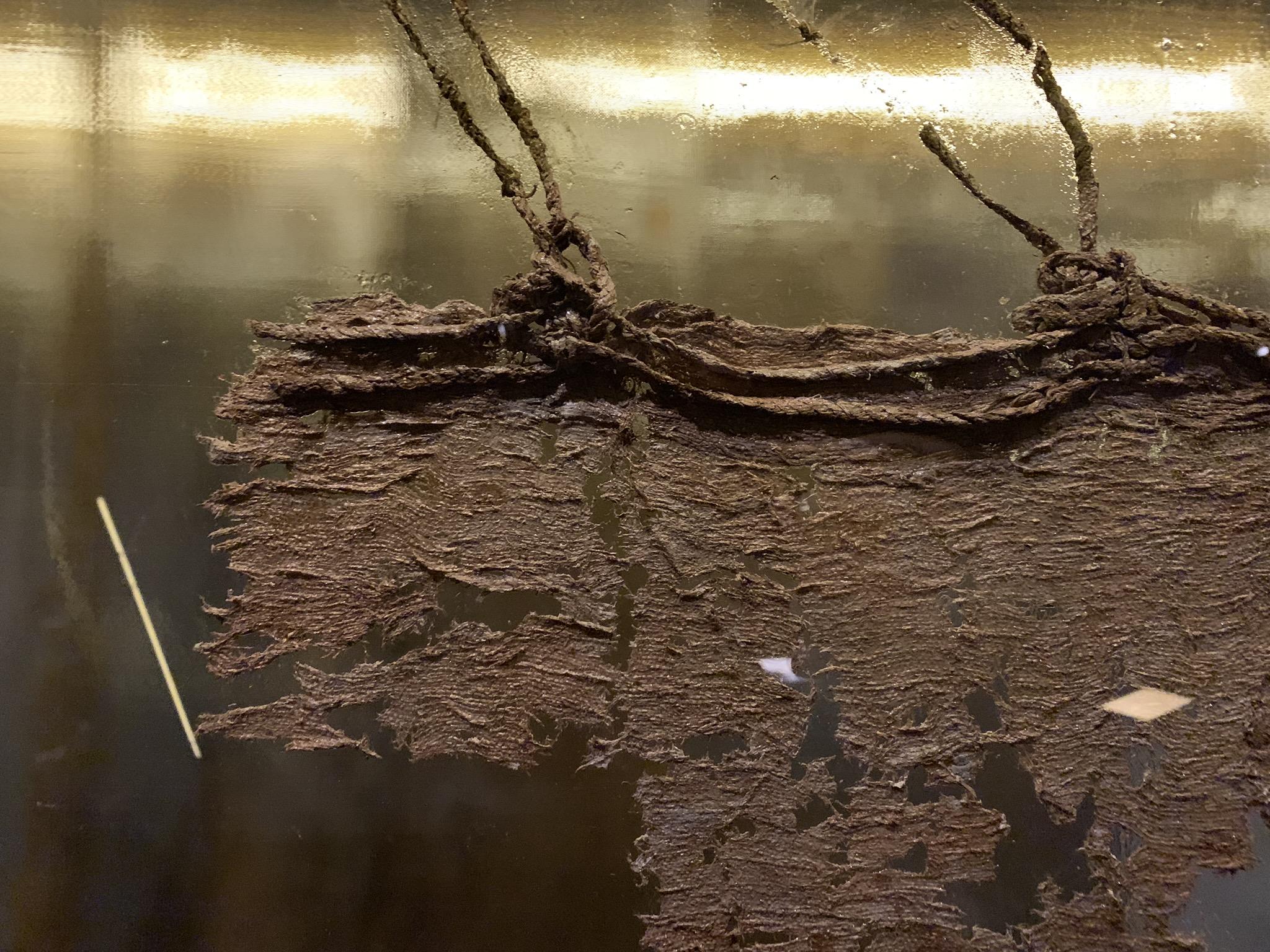 Voiles du Vasa, elles auront passé 333 ans sous l'eau.