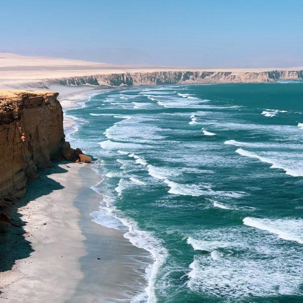 Pérou, réserve nationale de Paracas